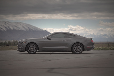 Mustang (04.26.15)