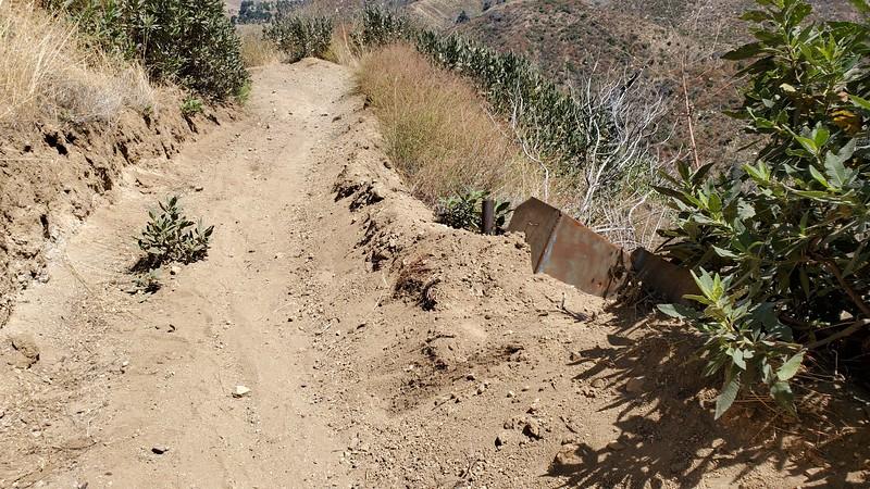 20190810040-Los Pinetos trailwork.jpg