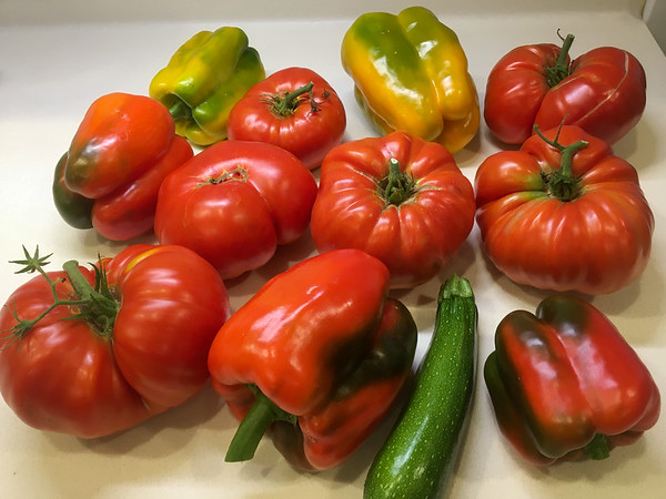 Garden Vegetables Summer 2021
