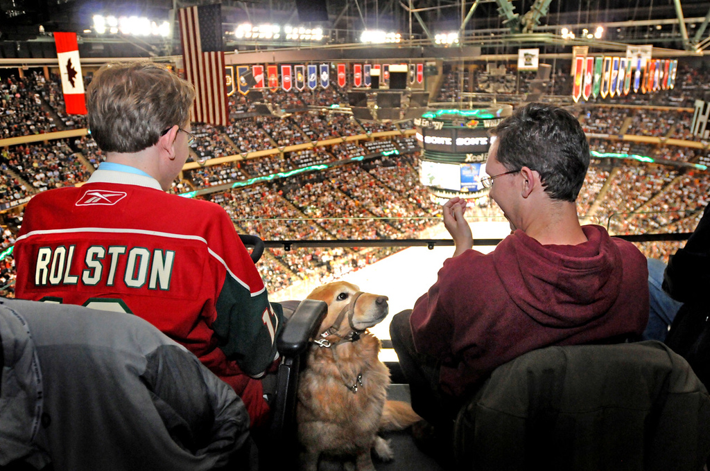 """. Not all dogs are lucky enough to get tickets to attend a Wild game, but Golden Retriever service dog Jenna joined Bryce Young, left, of St. Paul and his brother Brennan Young of Eau Claire for Game 3 of the Wild/Avalanche playoff series. \""""She tends to fall asleep until things get exciting,\"""" said Bryce. (Pioneer Press: Ginger Pinson)"""
