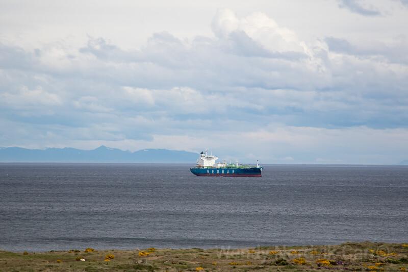 Discover Punta Arenas