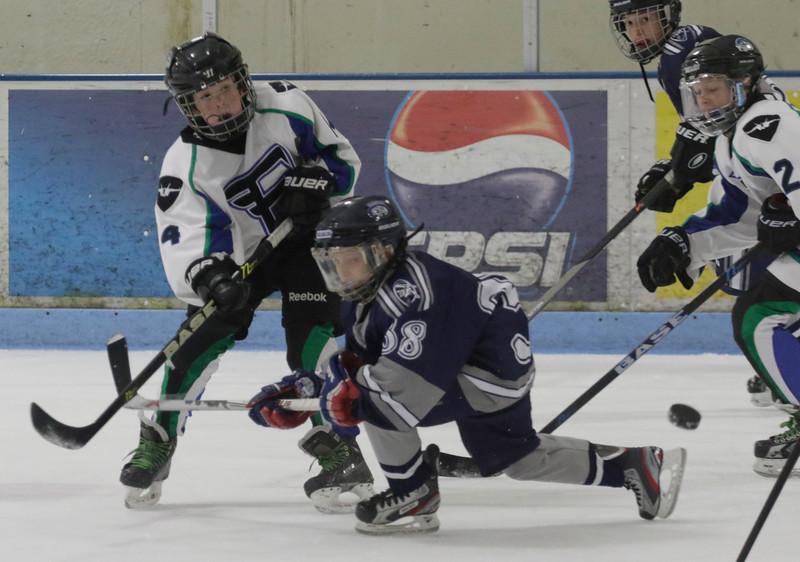 JPM126-Flyers-vs-Rampage-9-26-15.jpg
