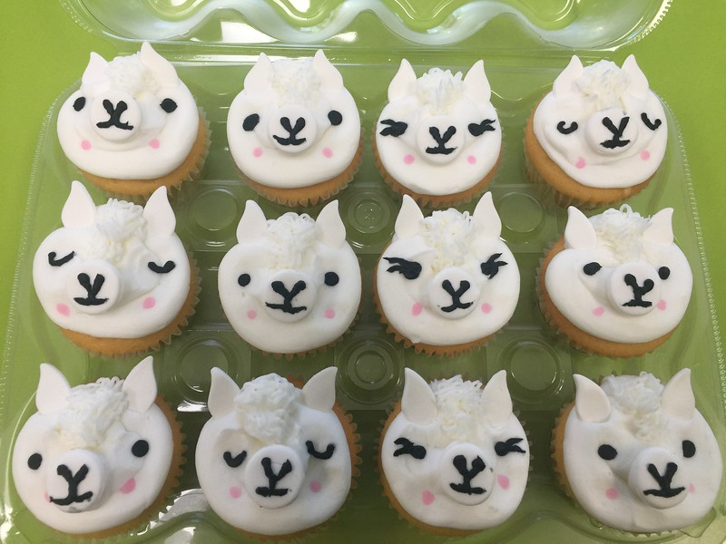 Cupcake (28).jpg