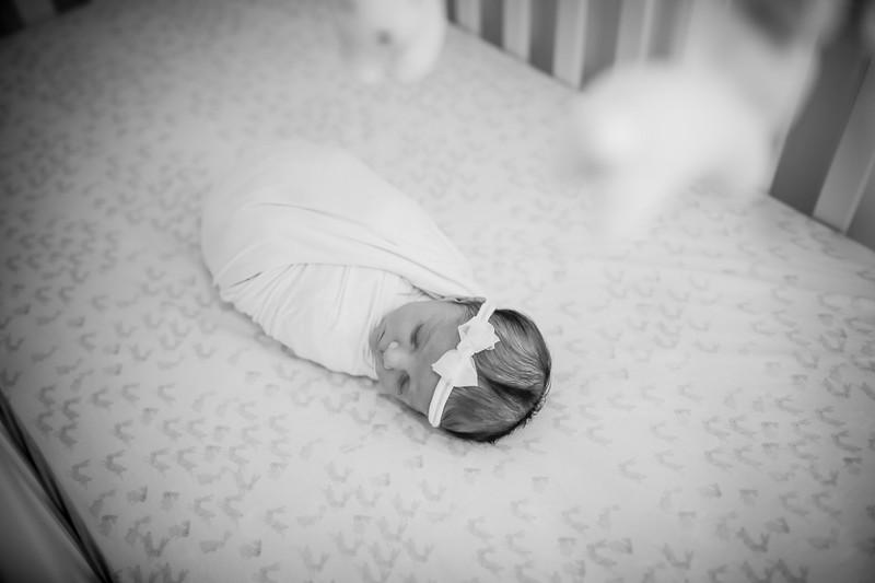 bw_newport_babies_photography_hoboken_at_home_newborn_shoot-5180.jpg