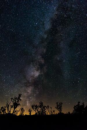 Mojave National Reserve 16 July 2016