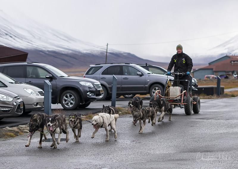 8-29-16169908 Longyearbyen Svalbard.jpg