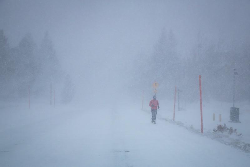December 24 - Snowstorm jogger.jpg