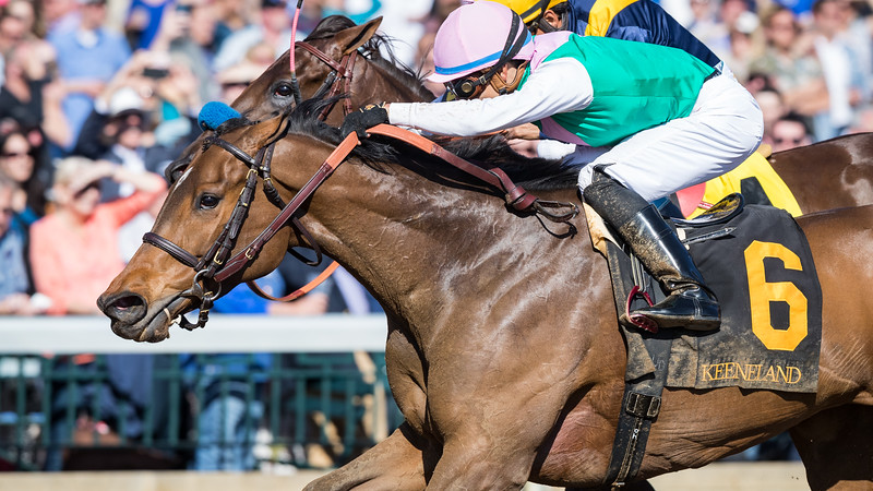 Paulassilverlining (Ghostzapper) wins The Madison (G1) at Keeneland on 4.8.2017. Jose Ortiz up, Chad Brown trainer, Juddmonte Farms owners.