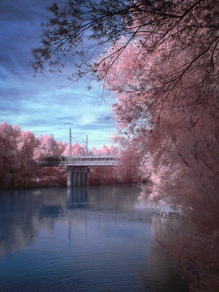 Flamingo Bridge