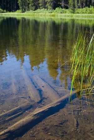 Cora Lake Trek - August 2008