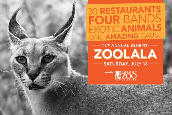 Zoolala 2015 web