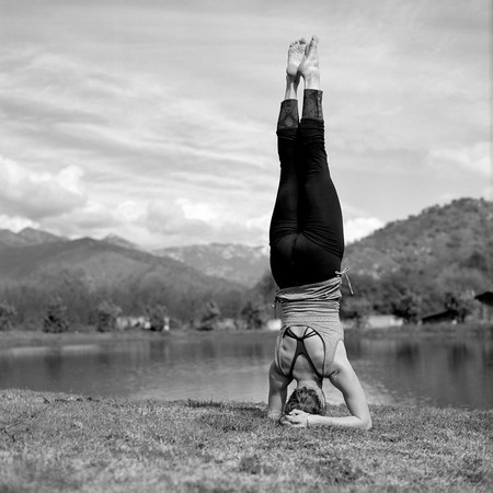 Sequoia Yoga