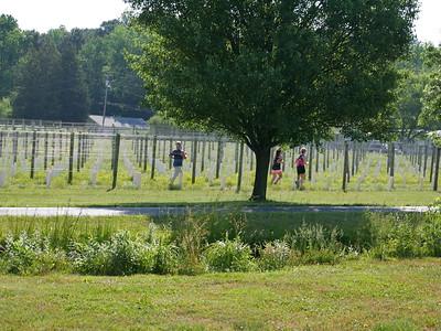 Run the Vineyards Harvest Ridge 5K 2021