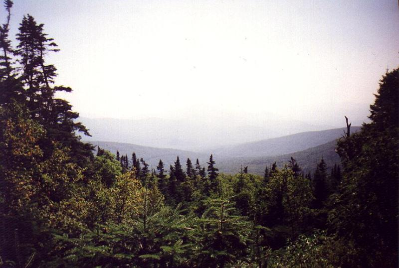 Gorge Brook Trail -- 3,500'