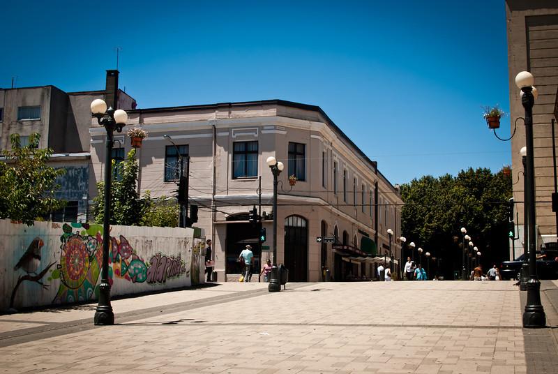 Valdivia 201201 (107).jpg