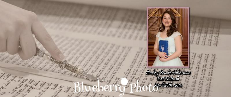 2014-04-26 Haberman - 3 000 (Cover 1).jpg