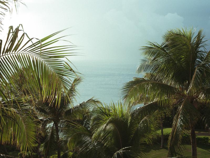 Maui2019-11.jpg