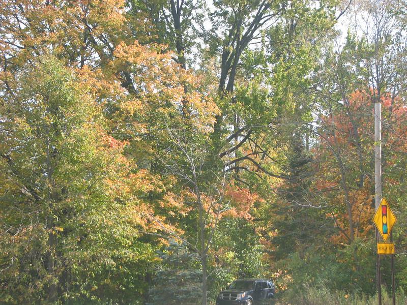 Fall pics 2008 038.jpg