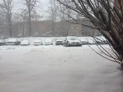 2015 03-05 Snow