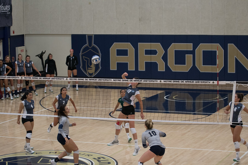 HPU Volleyball-91613.jpg