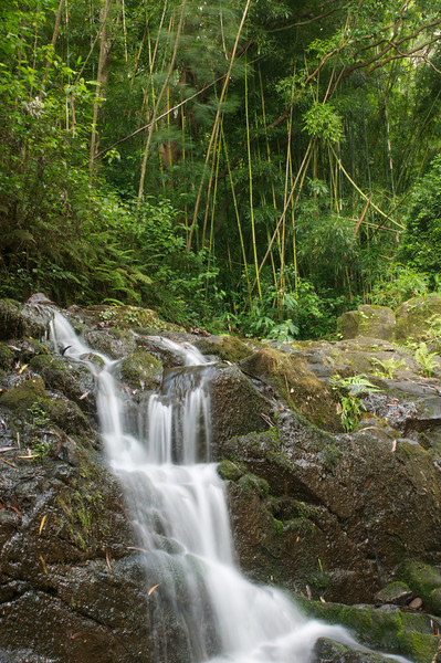 Hidden Oahu Waterfall