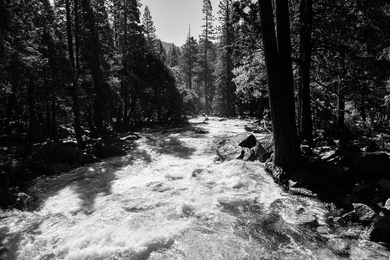 2019 San Francisco Yosemite Vacation 011 - Yosemite Falls.jpg