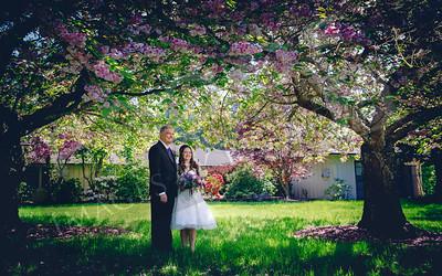 Sola's Wedding Renewal