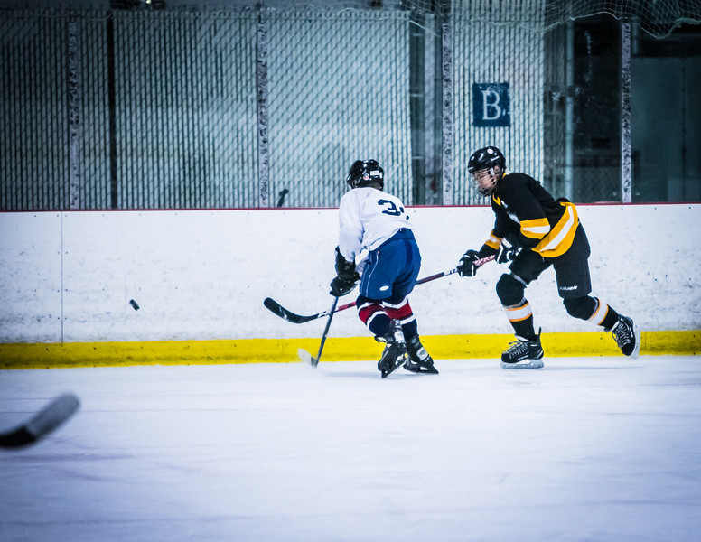 Bruins2-208.jpg