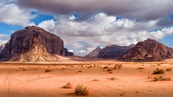 Aravian Desert Selection