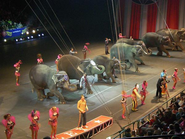 Circus 2007