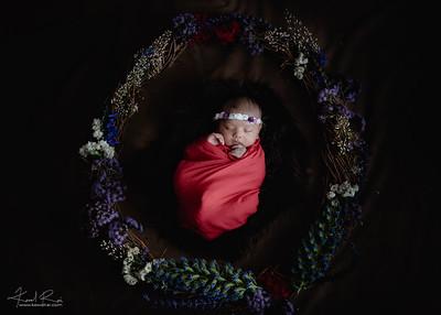 Saaz Newborn - Print