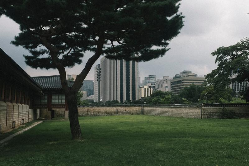 Korea_Insta-84.jpg