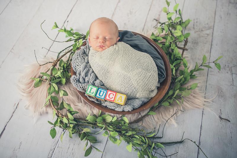 Rockford_newborn_Photography_L060.jpg