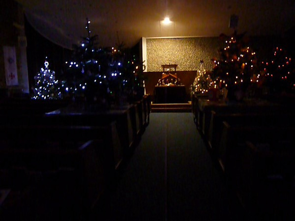 Christmas Tree Festival - a walk round the Trees