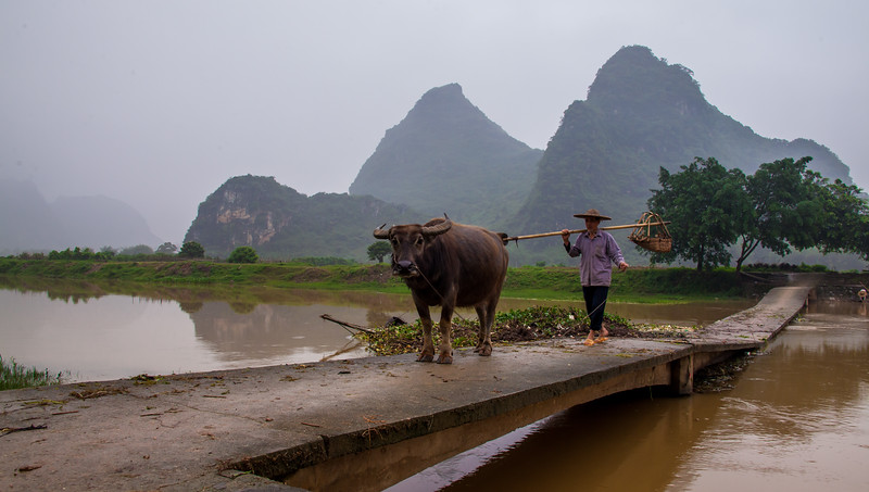 2012 china fisherman & old man w- cow-53.jpg