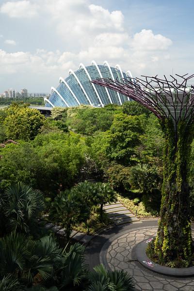 Singapore-19-061.jpg