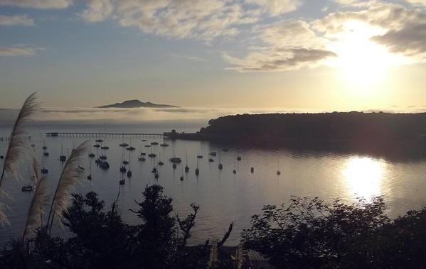15-06  Auckland mist