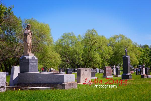 Cemetery, Rural Manitoba, 2967