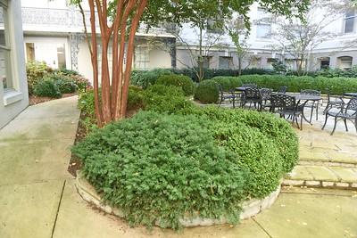 Gardens around campus