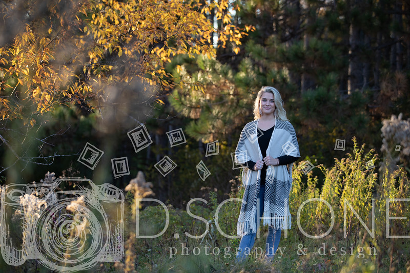 Anna Fall Senior pic -66.JPG