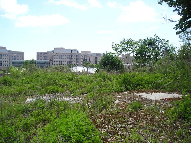 Fort Trumbull - wiki.jpg