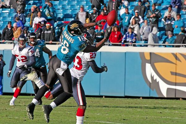 Jaguars vs. Texans:  The Game