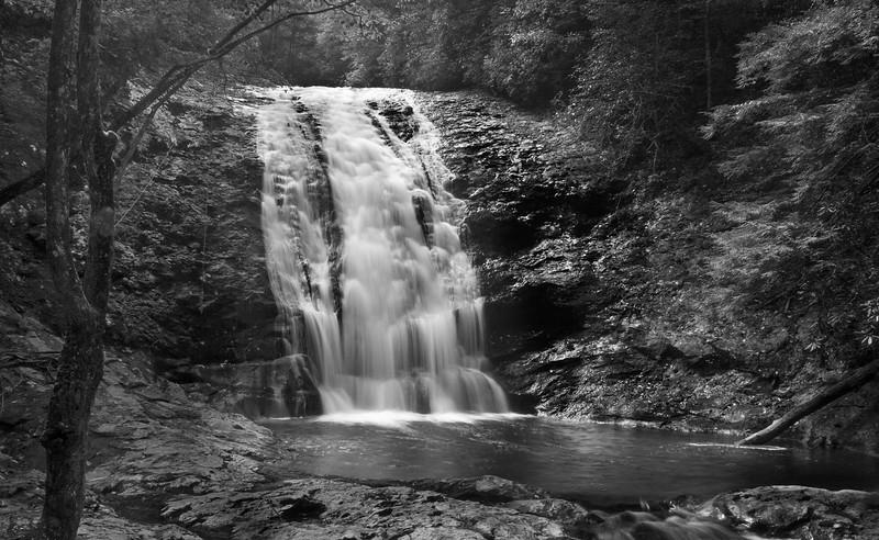 mill creek falls_1446.jpg