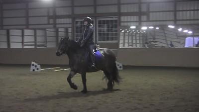 TSRC 2018-12-15 Milestone Sport Horses Video