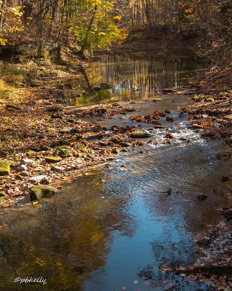 Black River 110516-3.jpg