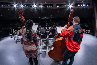 High School Orchestra Groups 2/25/15
