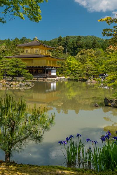 Kyoto's Golden Pavilion, Kinkaku-ji