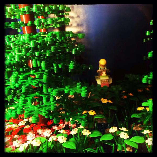 Lego field
