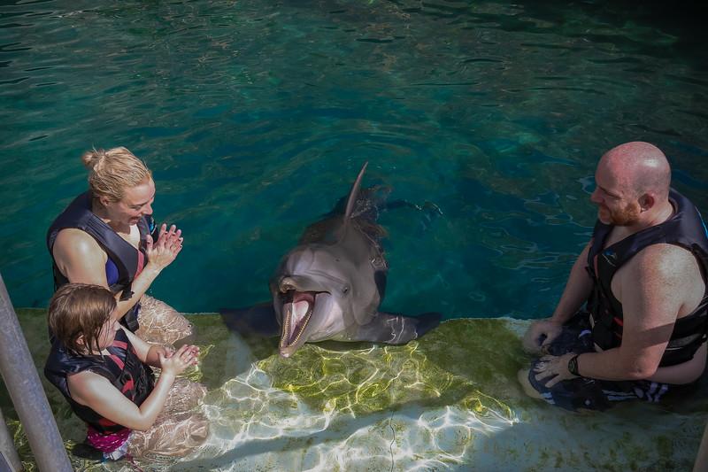 2019 August Dolphin Quest-118.jpg