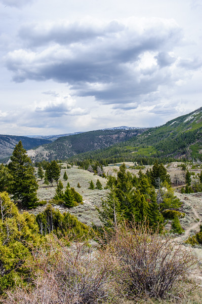 20130511-12 Yellowstone 105.jpg